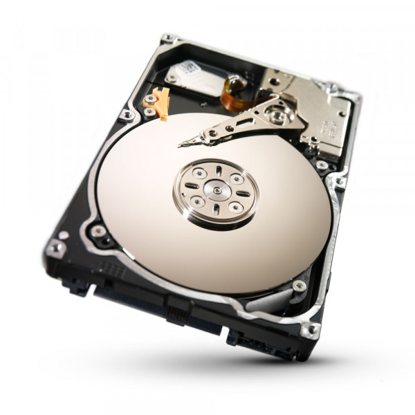 SV35.3 Series ST3750330SV - Festplatte - 750 GB